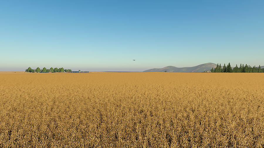 Some of the many fields with wheat, ready to be harvested